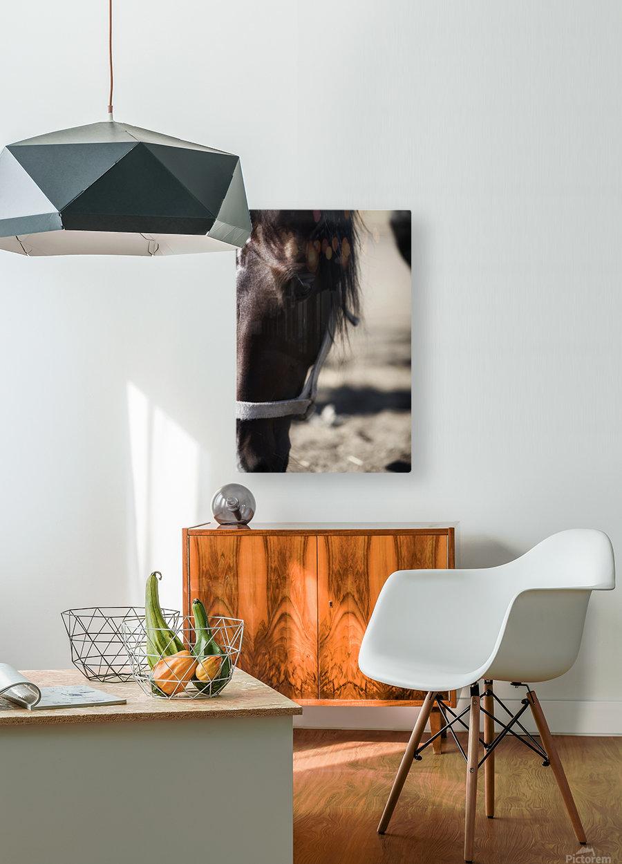 Spirit  HD Metal print with Floating Frame on Back