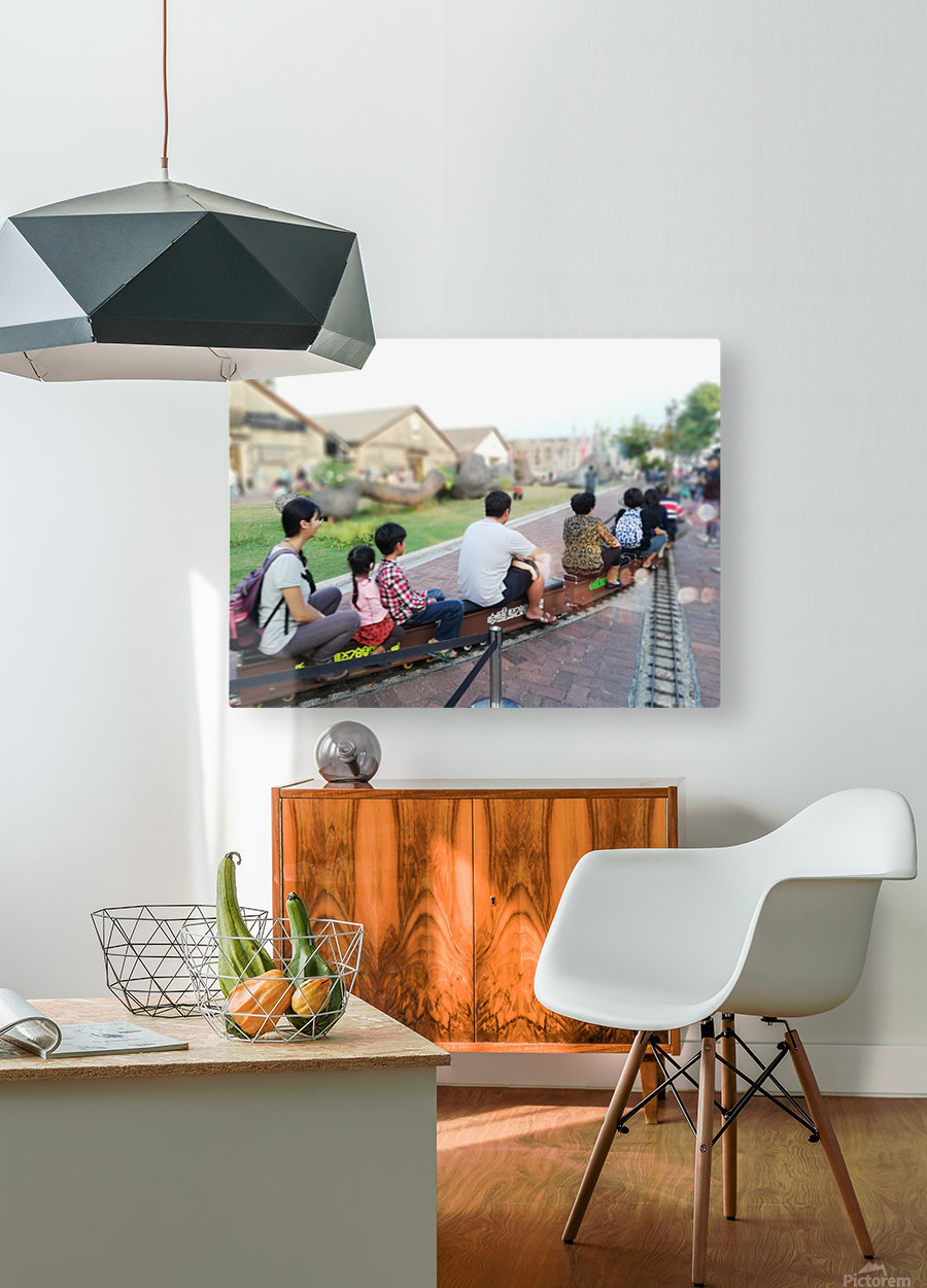 I find a unique train!  HD Metal print with Floating Frame on Back
