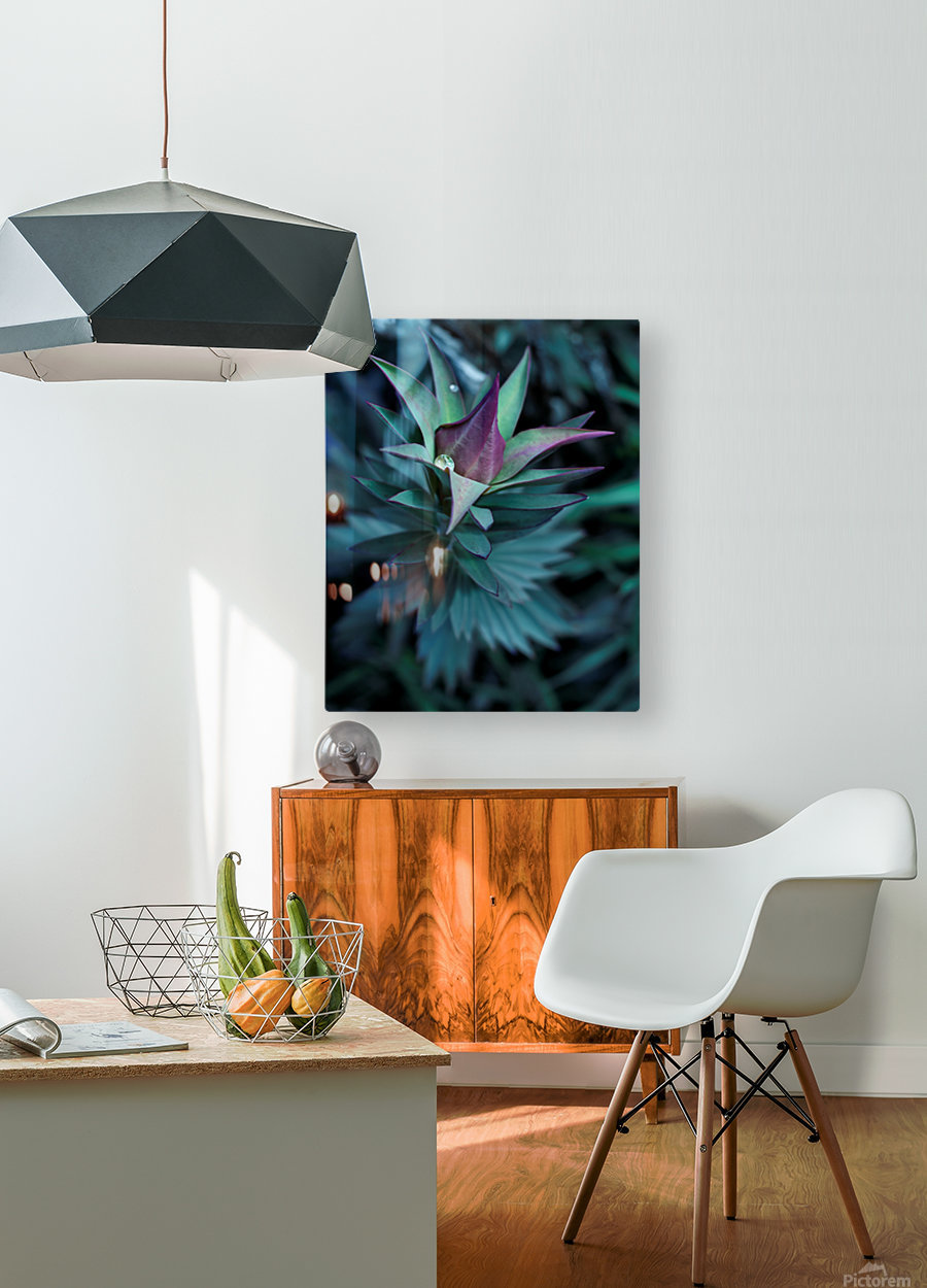 Funky flora  HD Metal print with Floating Frame on Back