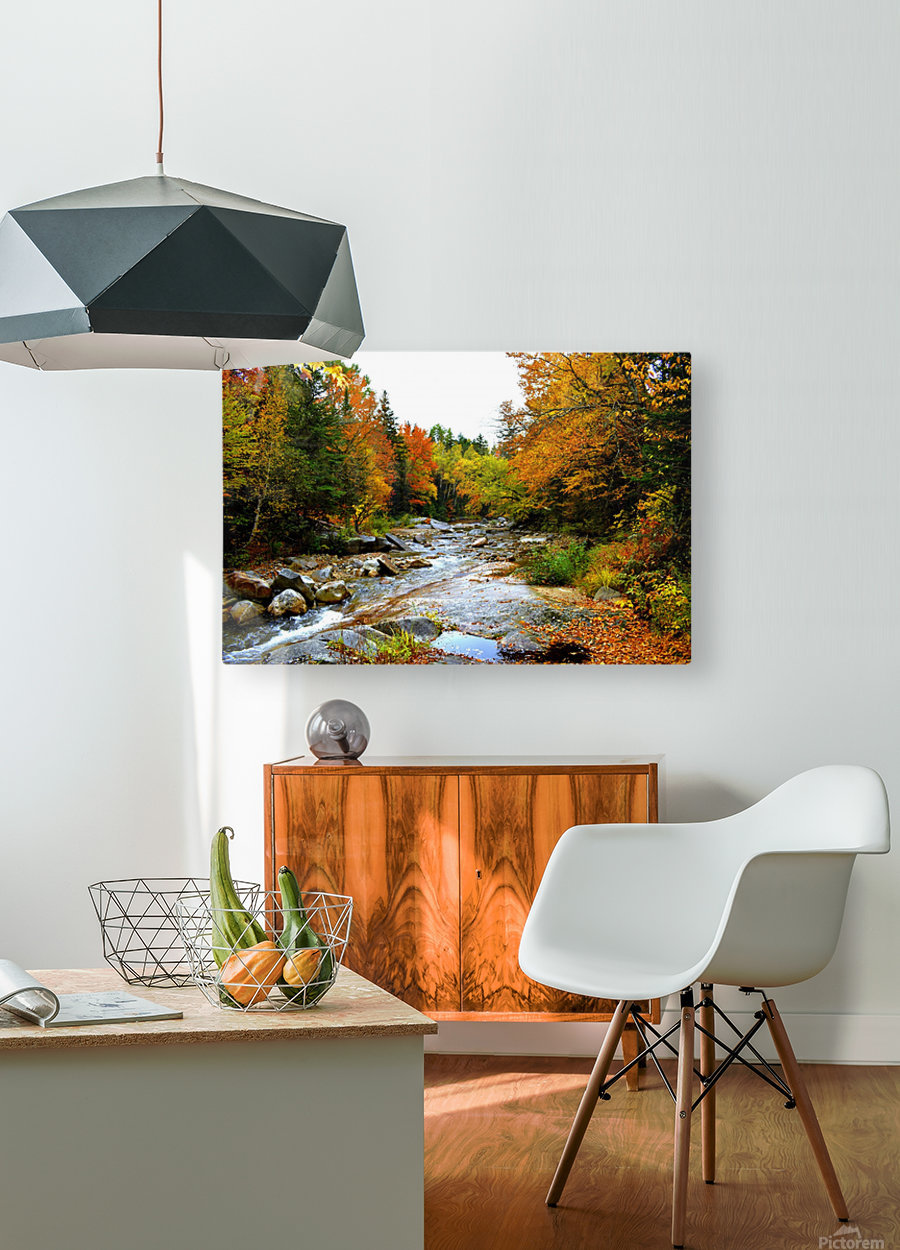 10.9.18 Fall  HD Metal print with Floating Frame on Back