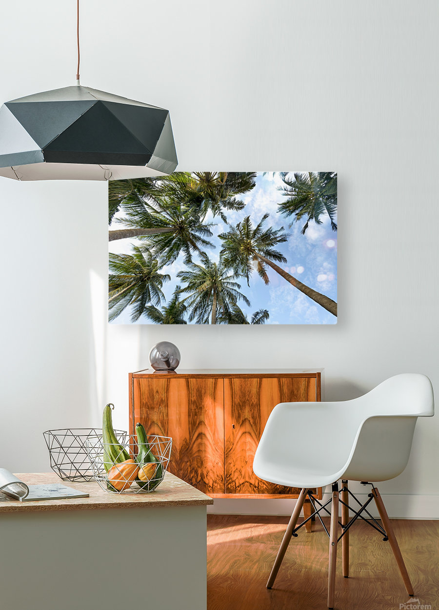 palm trees, sky, palms, background, summer, tropical, nature, holidays, travel, paradise, outdoors,  HD Metal print with Floating Frame on Back