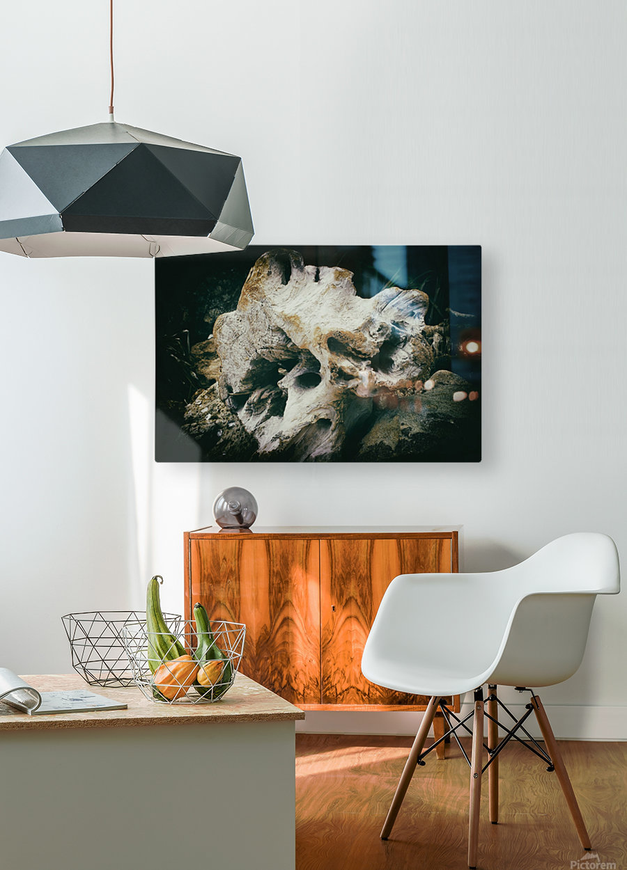 Forgotten  HD Metal print with Floating Frame on Back
