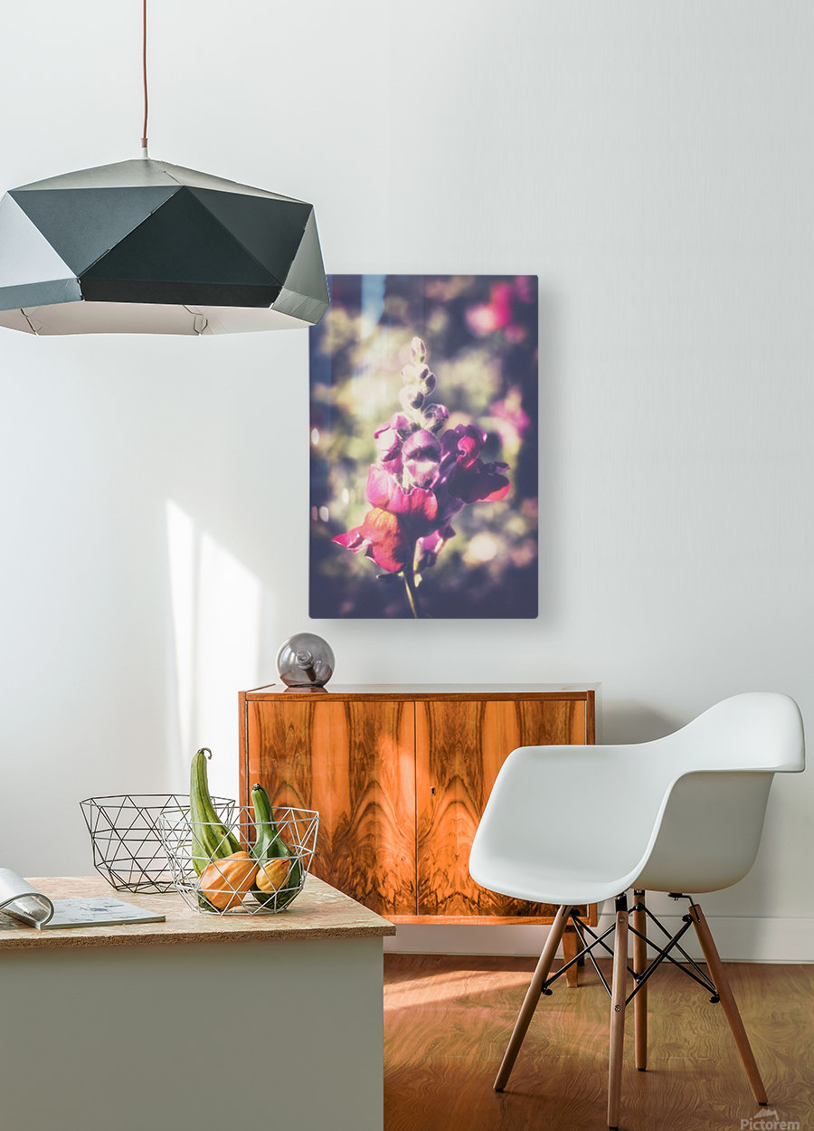 Lupine Fuchsia  HD Metal print with Floating Frame on Back