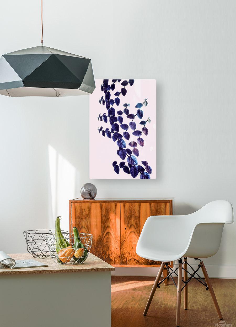 Bindweed in Violet  HD Metal print with Floating Frame on Back
