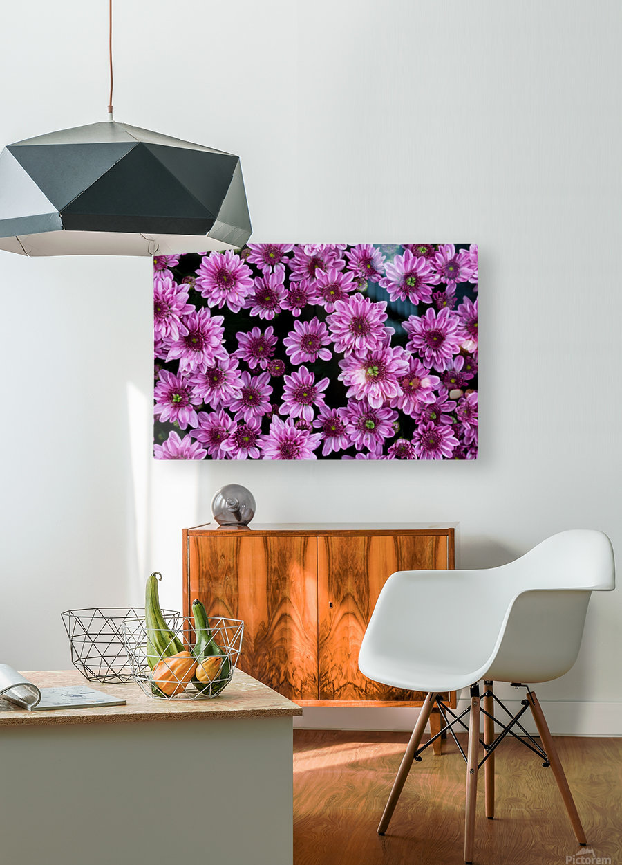 Purple flowre  HD Metal print with Floating Frame on Back