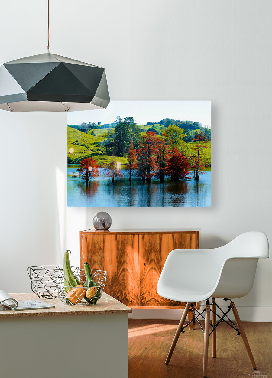 Water Trees  HD Metal print with Floating Frame on Back