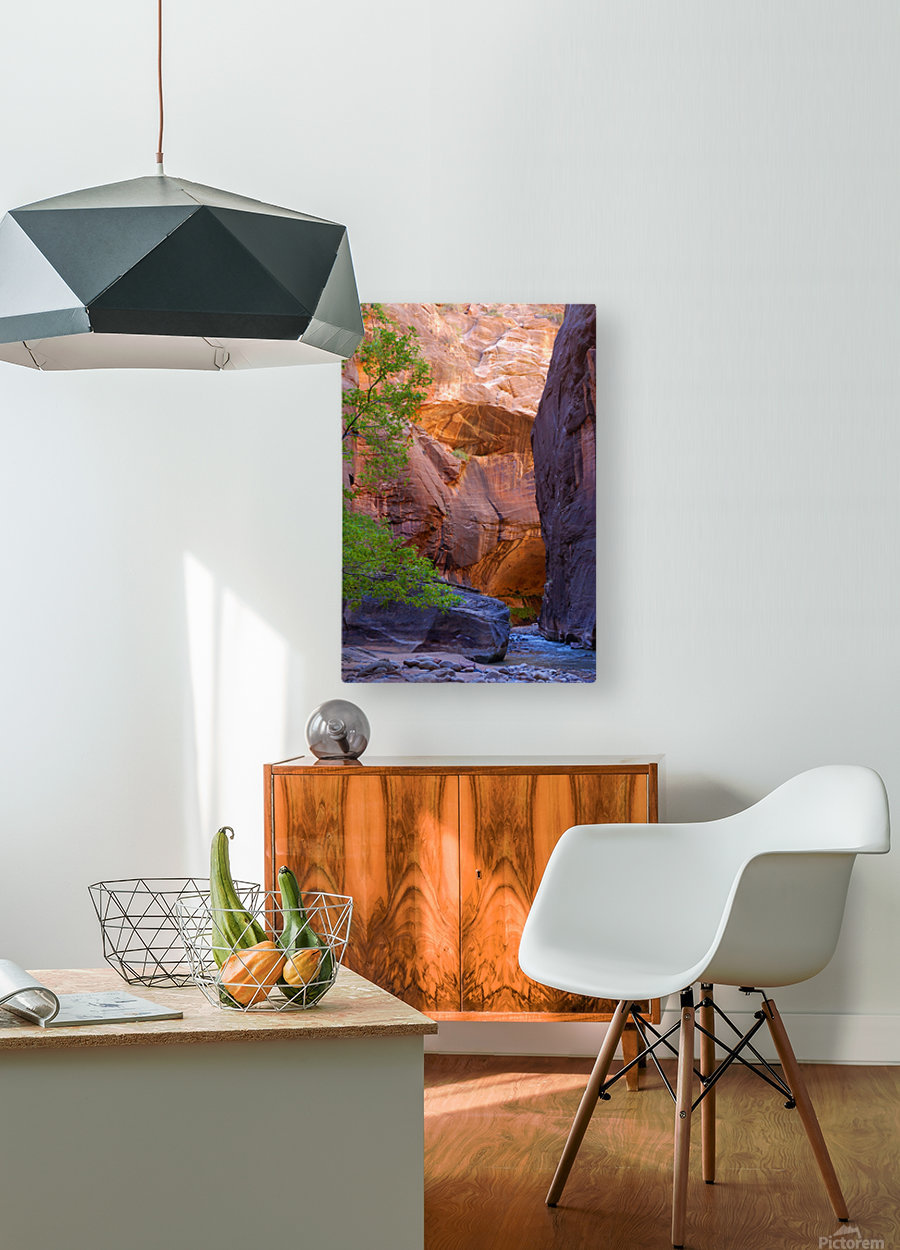 The Narrows  HD Metal print with Floating Frame on Back