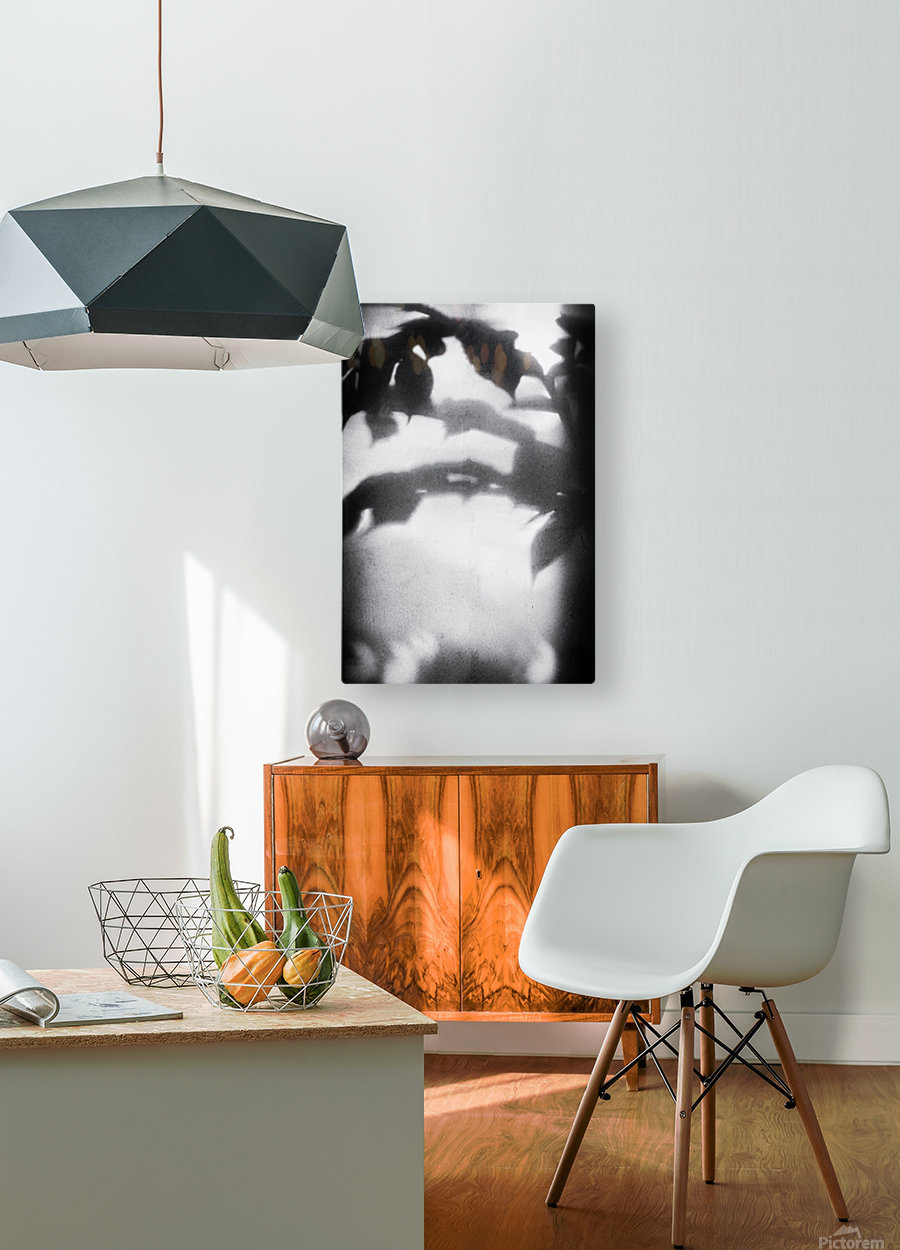 Plant Shadow  HD Metal print with Floating Frame on Back