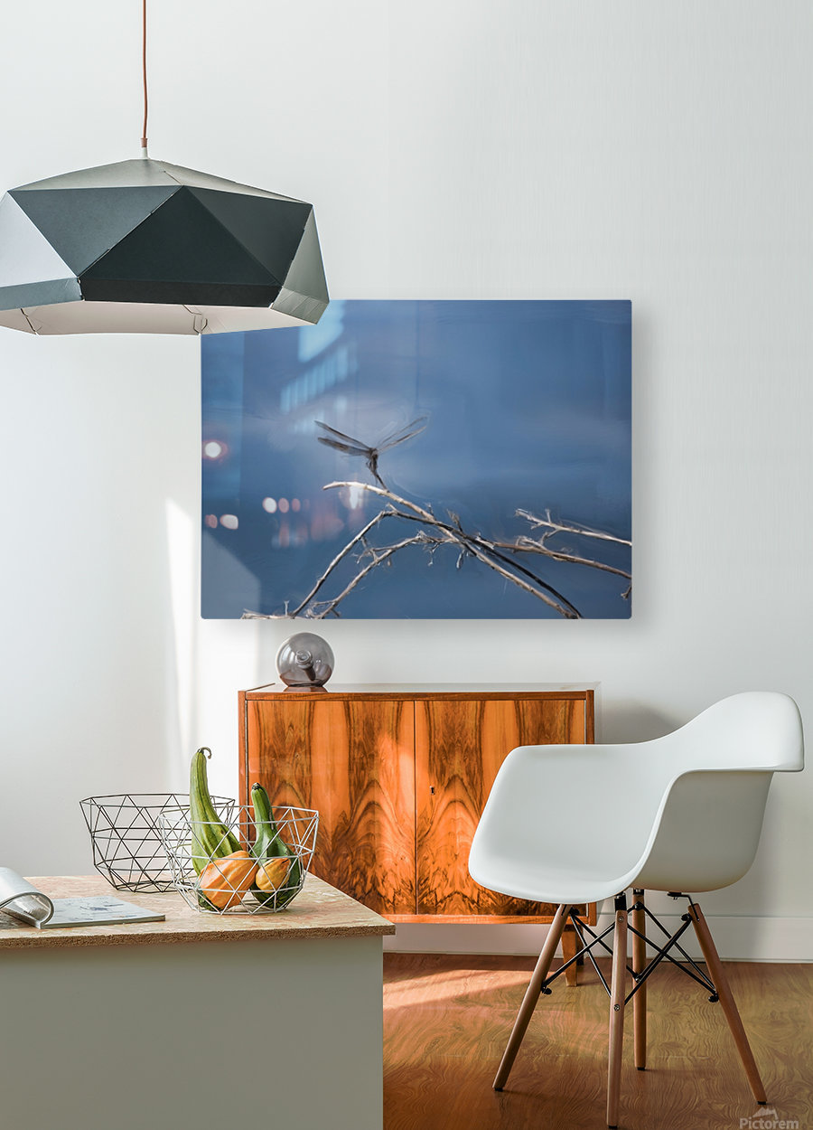Dragonfly Digital Painting 52-70 200px  HD Metal print with Floating Frame on Back