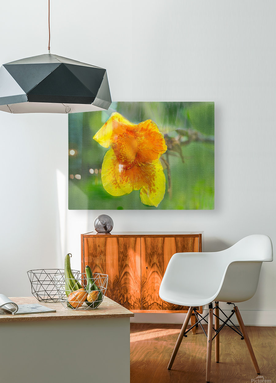 Canna Lily Digital Painting 52 70 200px  HD Metal print with Floating Frame on Back