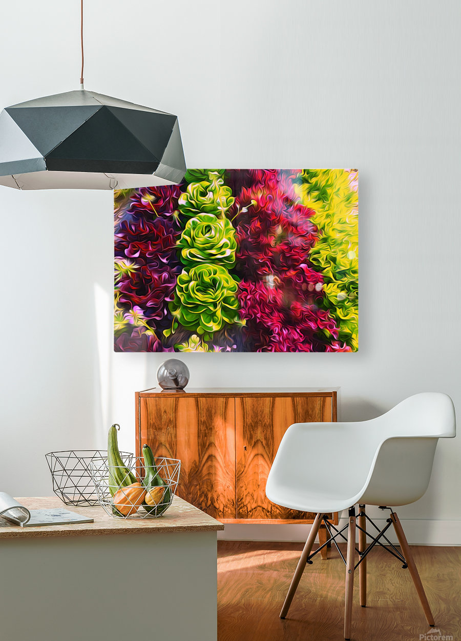 Lettuces  HD Metal print with Floating Frame on Back