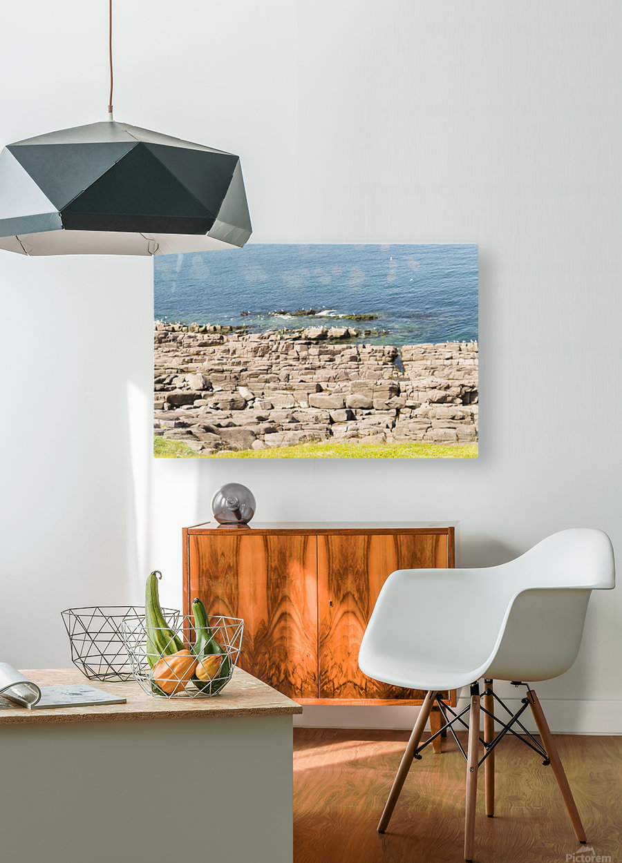 View from Cape Spear Walking trails   HD Metal print with Floating Frame on Back