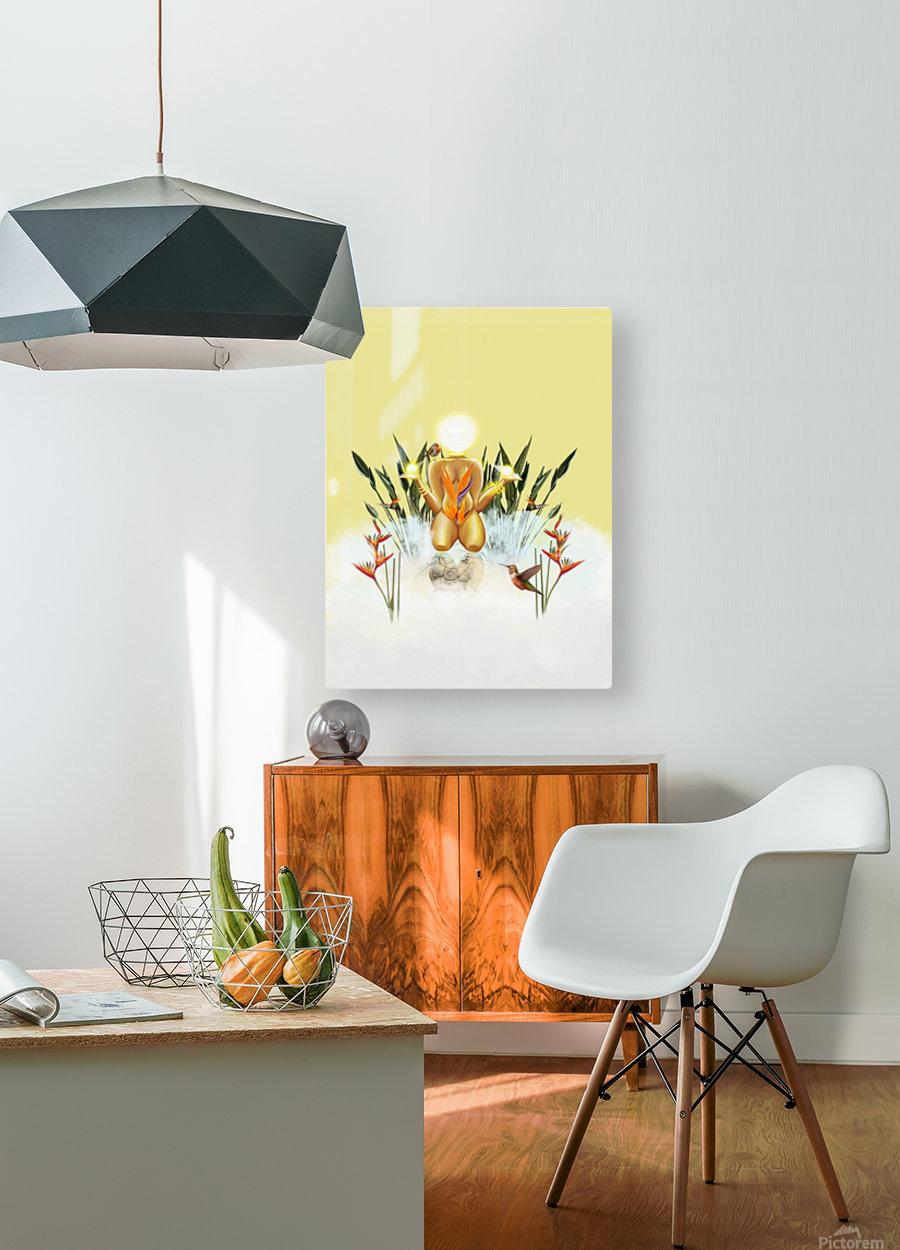 Sun Goddess  HD Metal print with Floating Frame on Back