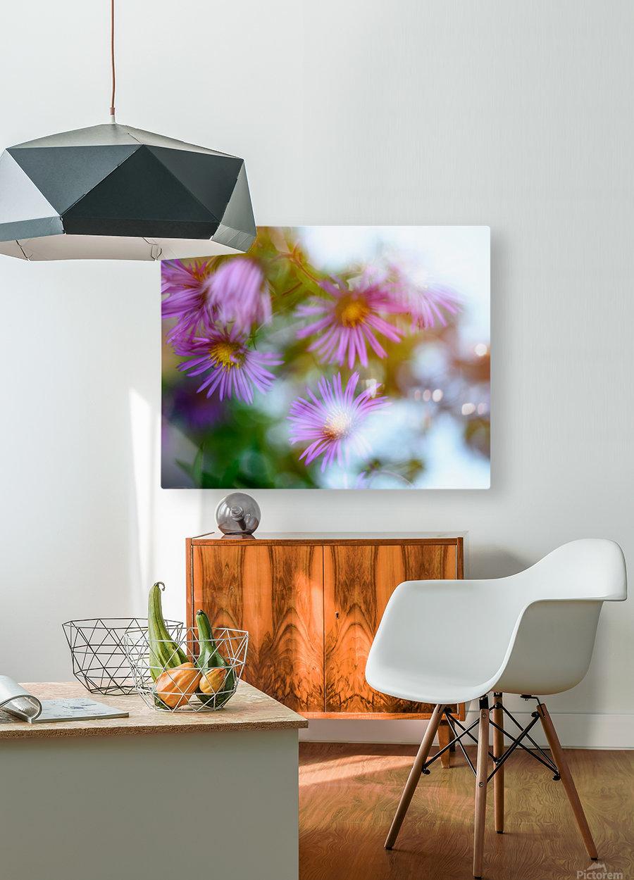 Fleur et ciel  HD Metal print with Floating Frame on Back