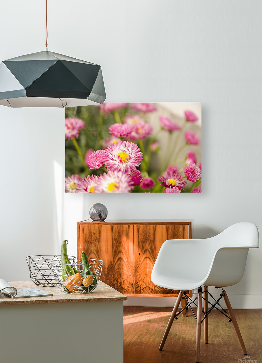 Blooms in the Garden  HD Metal print with Floating Frame on Back