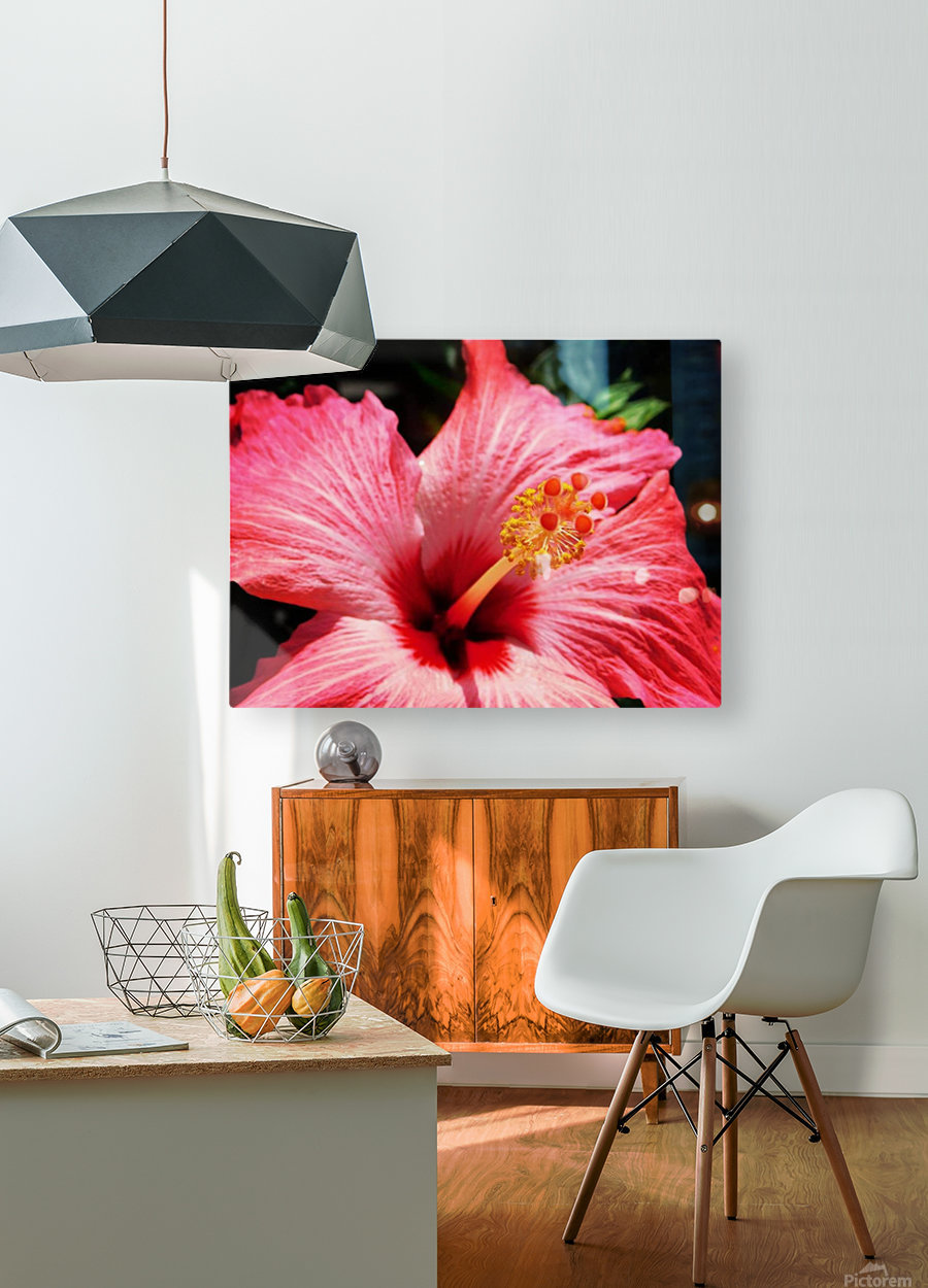 close up  HD Metal print with Floating Frame on Back