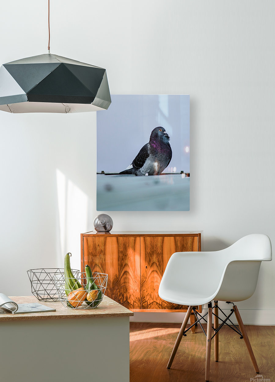 Beauty  HD Metal print with Floating Frame on Back