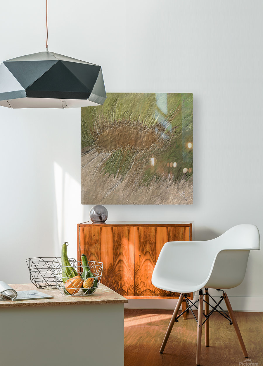 Acid etch  HD Metal print with Floating Frame on Back