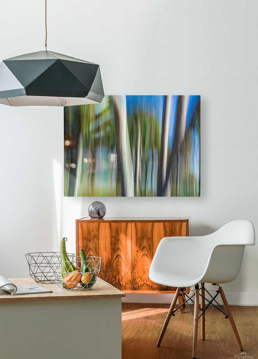 Moving Trees 31 Landcape 52 70 200px  HD Metal print with Floating Frame on Back