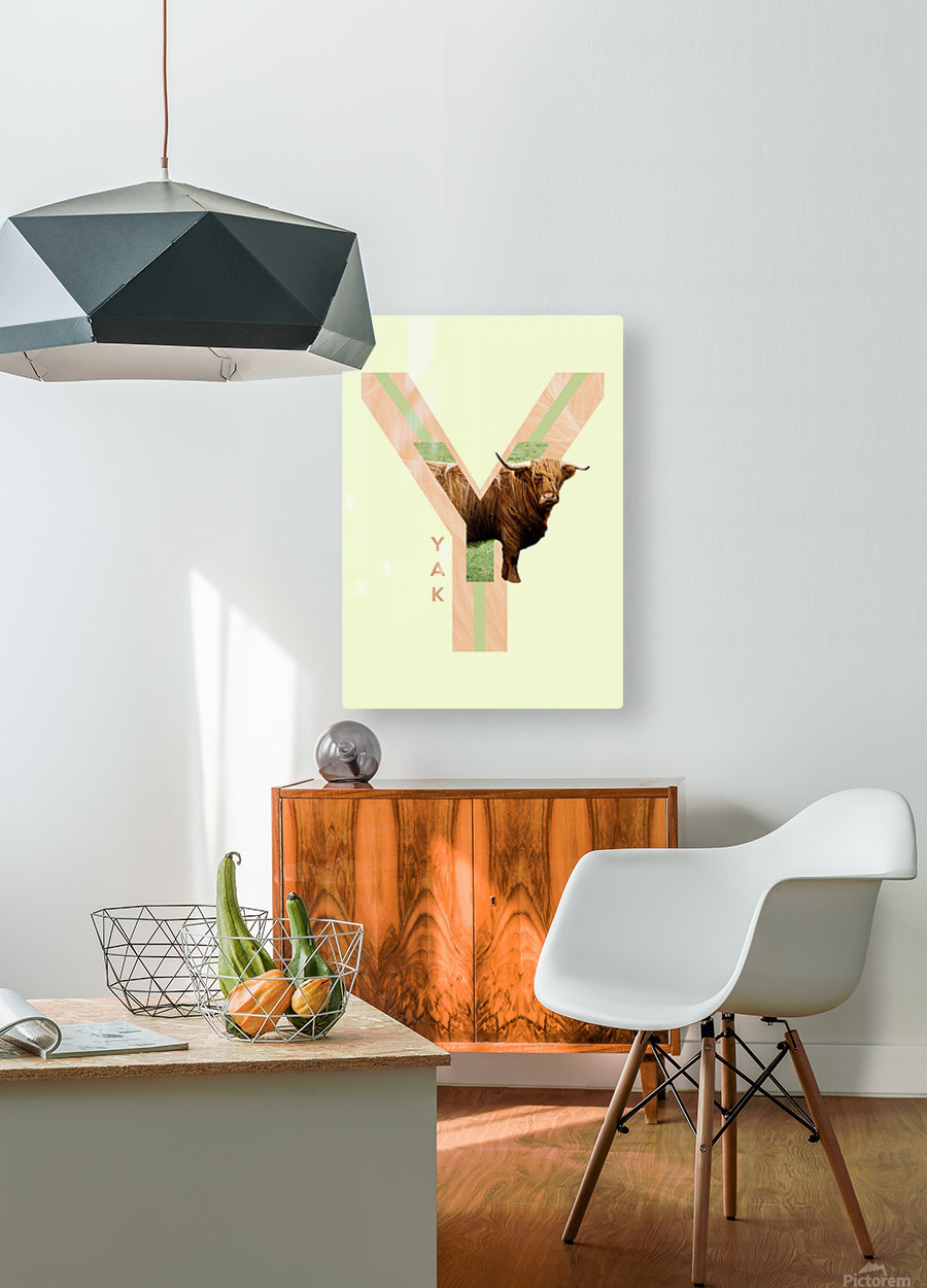 Yak  HD Metal print with Floating Frame on Back