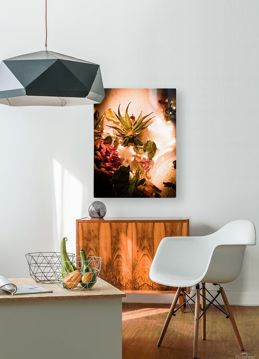 Bird of paradise   Impression métal HD avec cadre flottant sur le dos