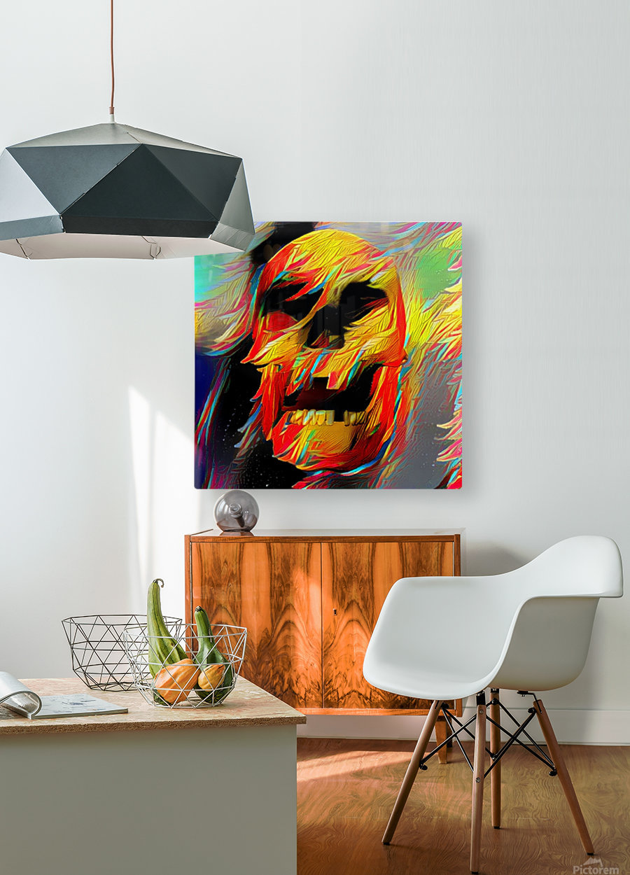 Colorful Skull  HD Metal print with Floating Frame on Back