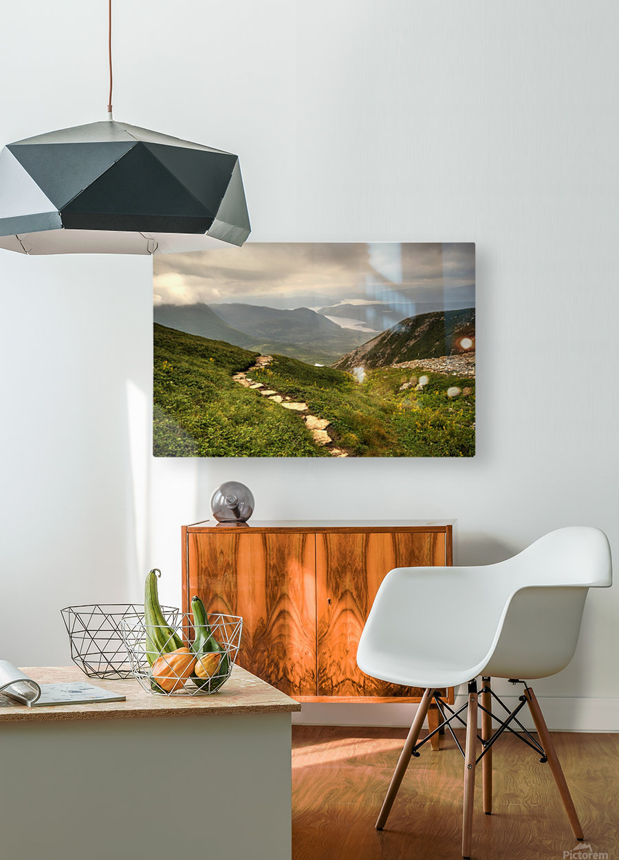 Grosmorne Mountain  HD Metal print with Floating Frame on Back