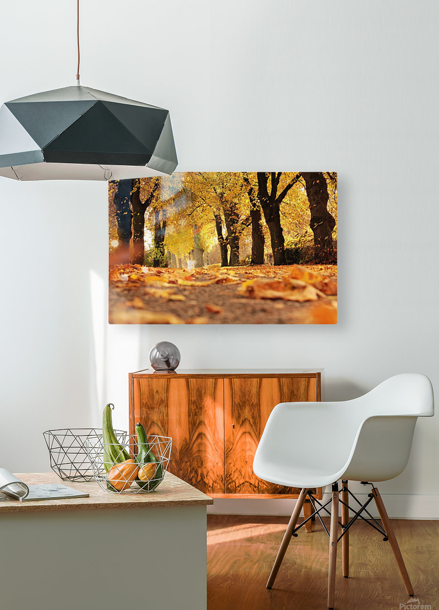 JPT 5921W  HD Metal print with Floating Frame on Back