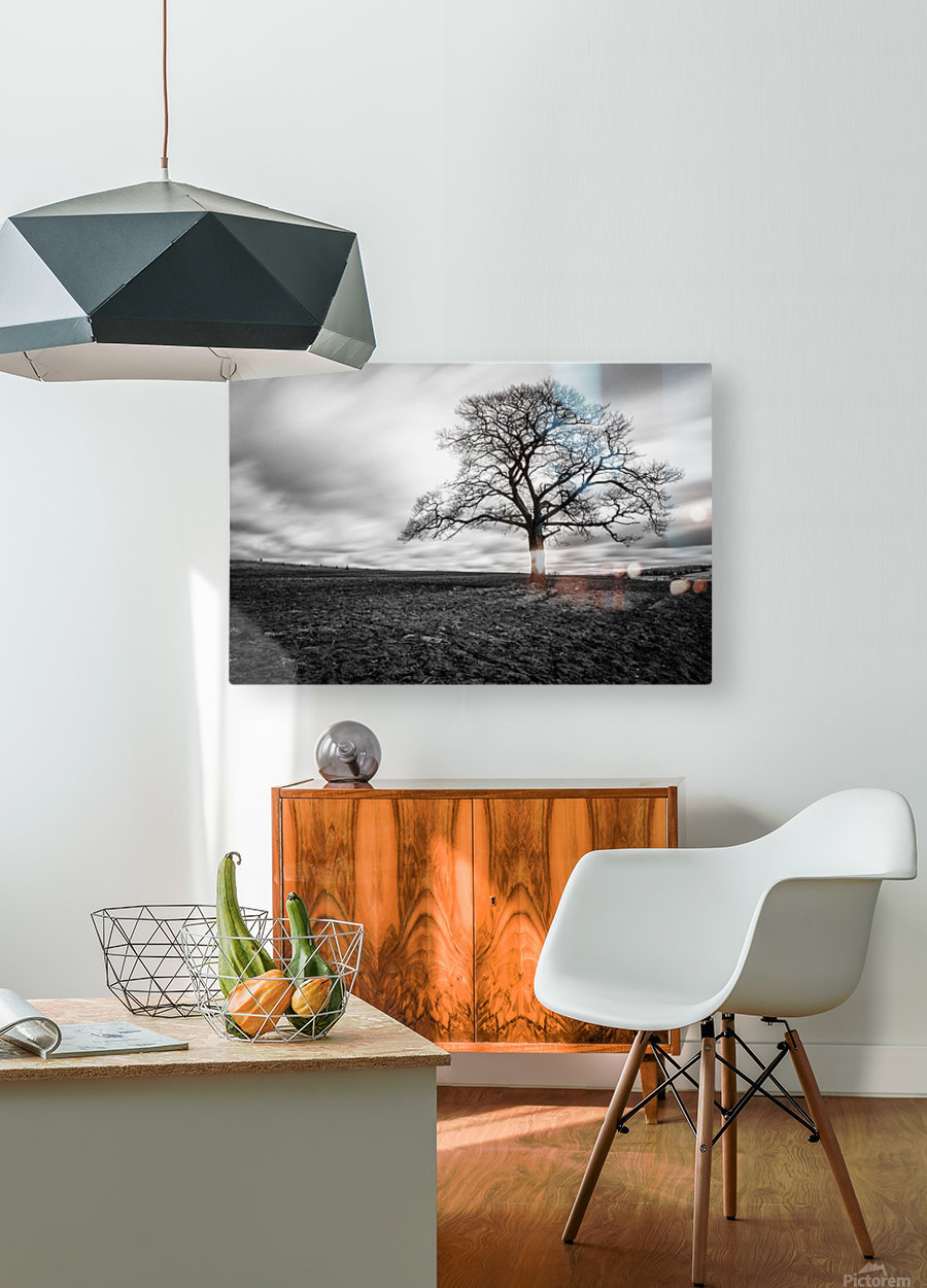 Dark Tree  HD Metal print with Floating Frame on Back