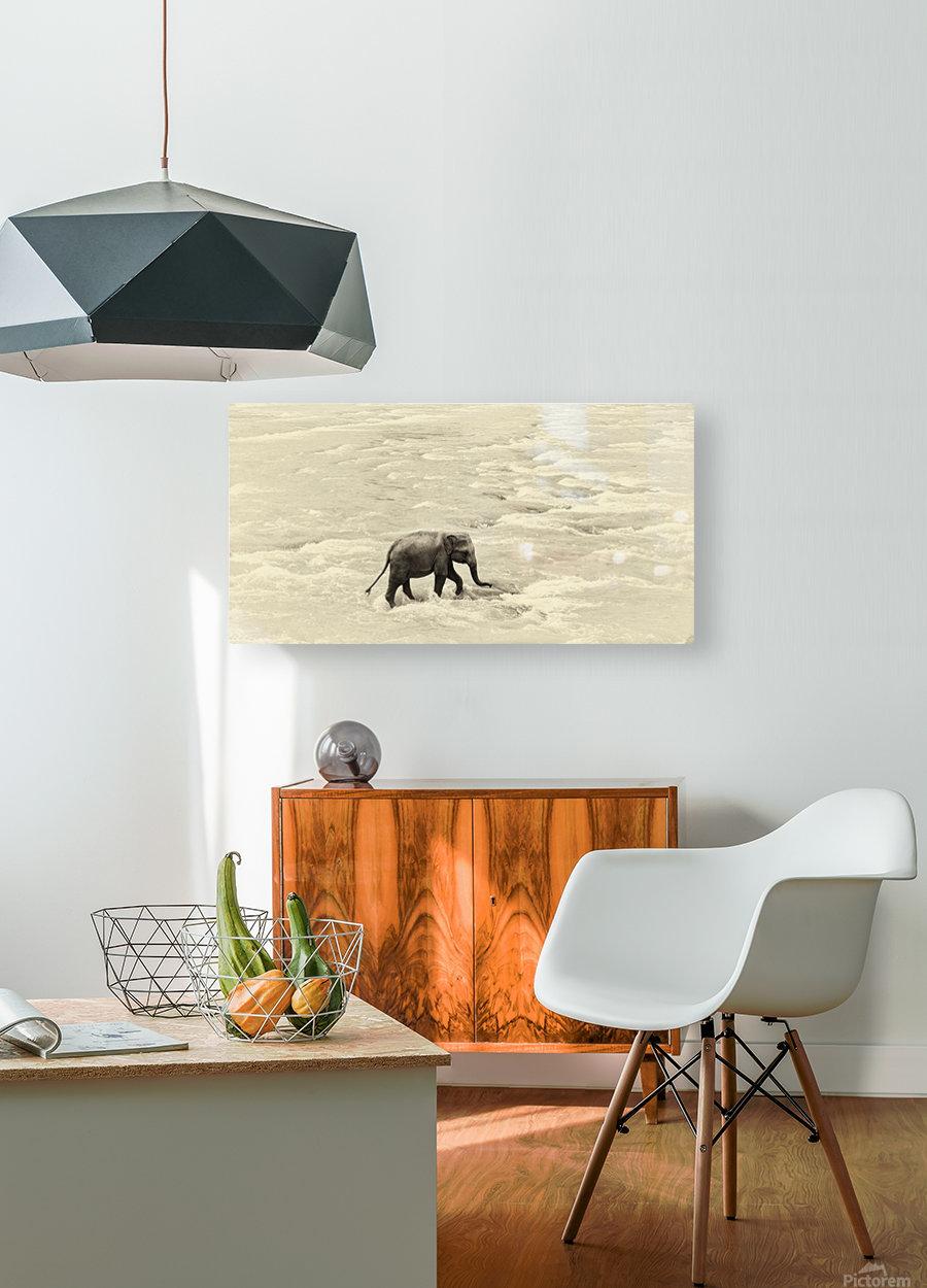 RIVER ELEPHANTS 5.  HD Metal print with Floating Frame on Back