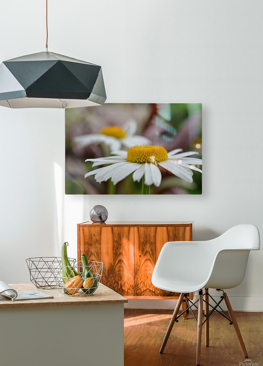 White Flower Photograph  HD Metal print with Floating Frame on Back