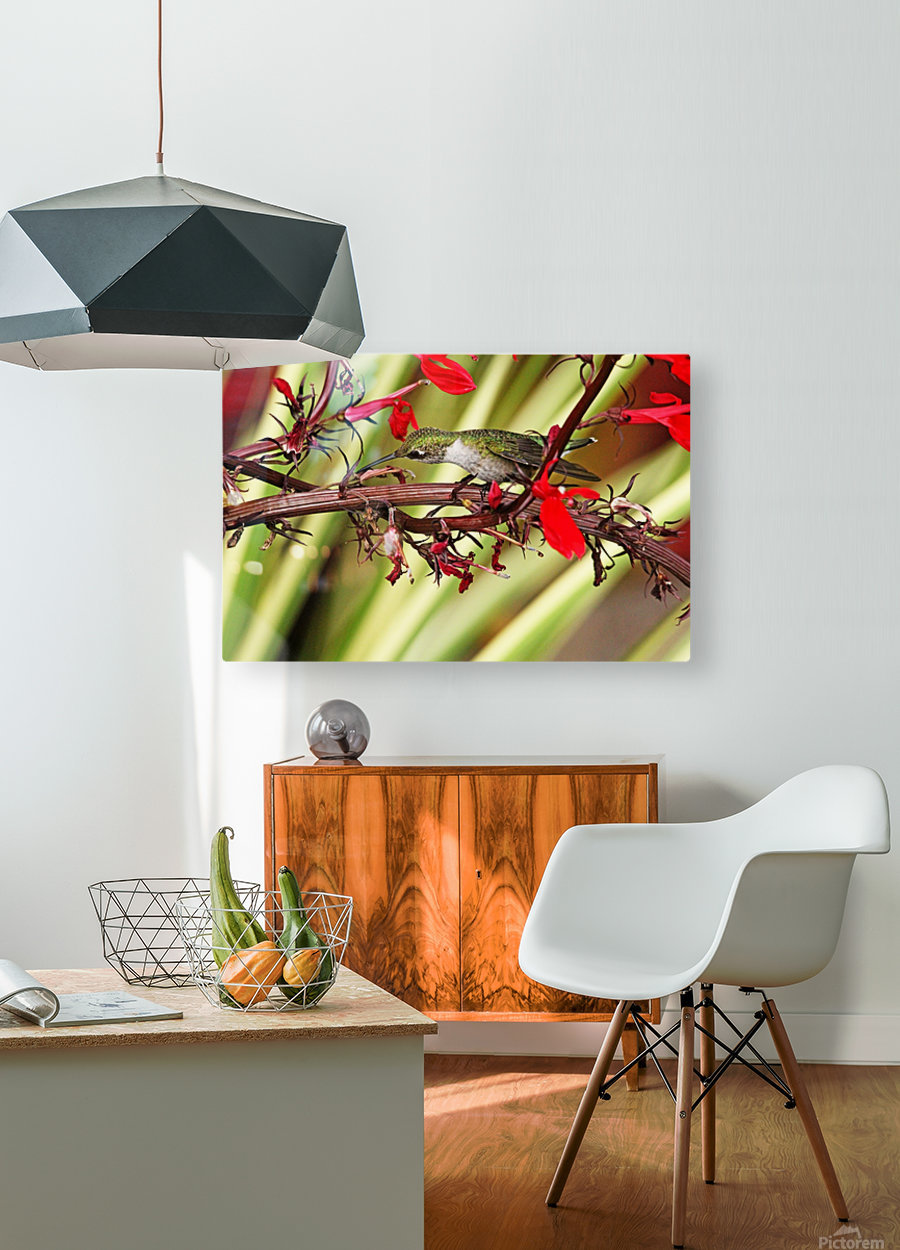 Sit And Sip  HD Metal print with Floating Frame on Back