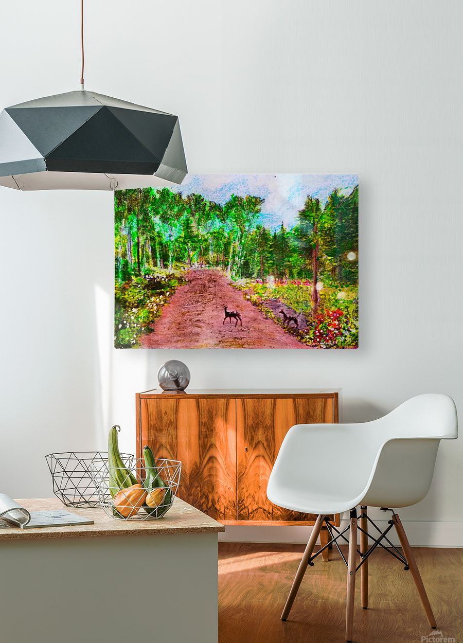 Old Road to Cochoran   HD Metal print with Floating Frame on Back