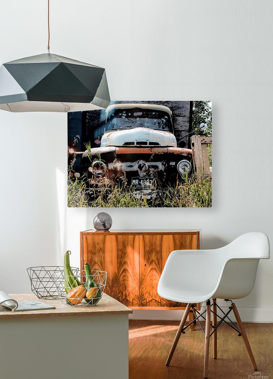 Mr 49  HD Metal print with Floating Frame on Back