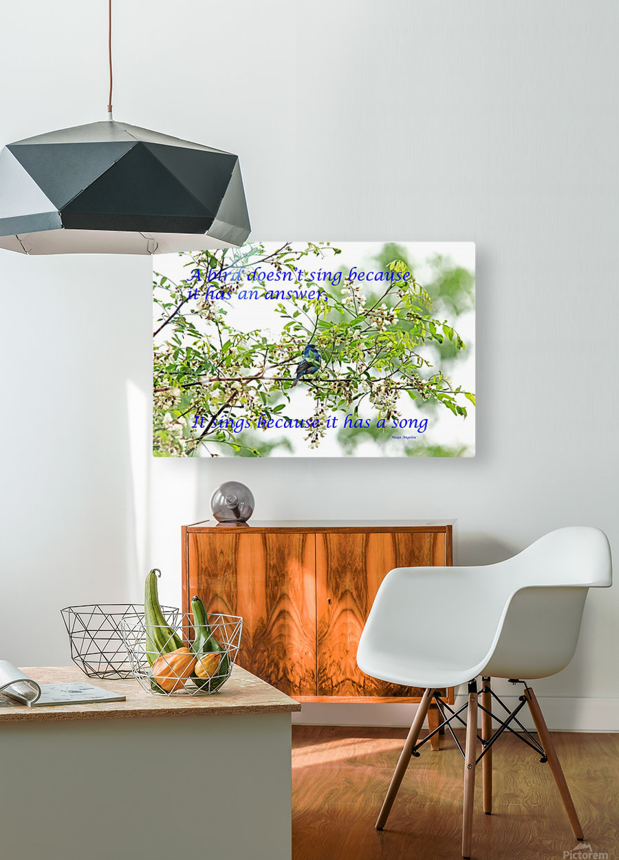 Because It Has A Song  HD Metal print with Floating Frame on Back