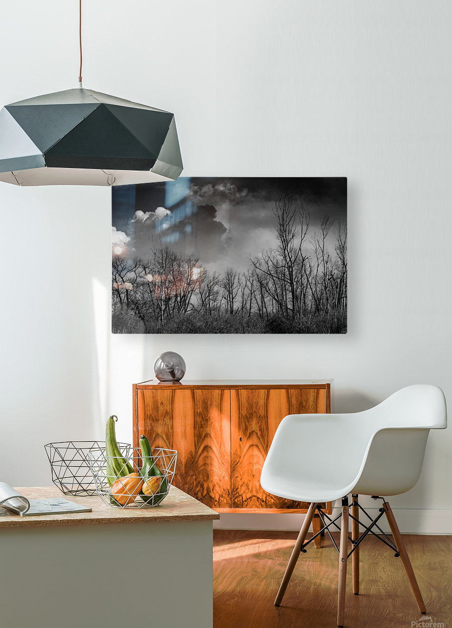 Magee Marsh 1  HD Metal print with Floating Frame on Back