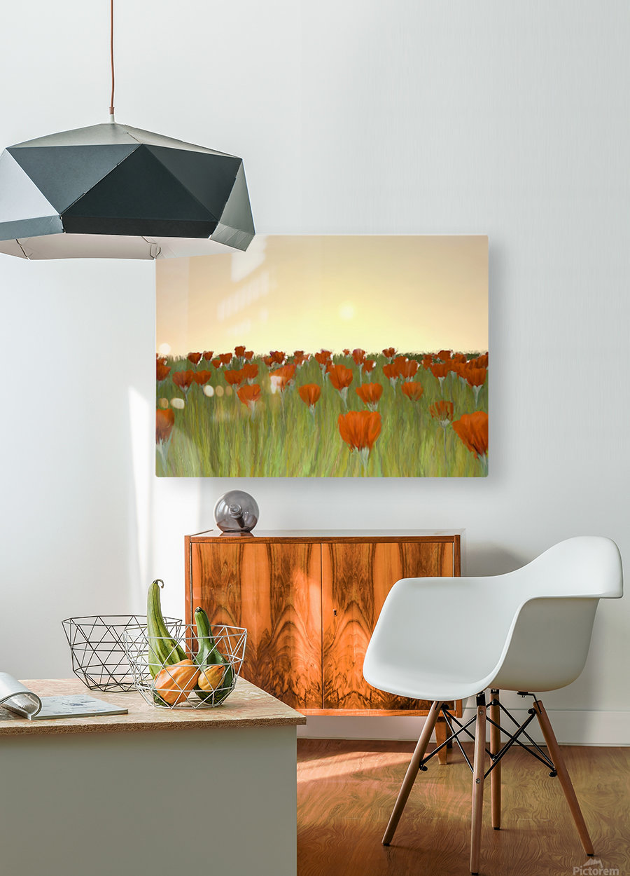 RED POPPIES at Sunset  HD Metal print with Floating Frame on Back