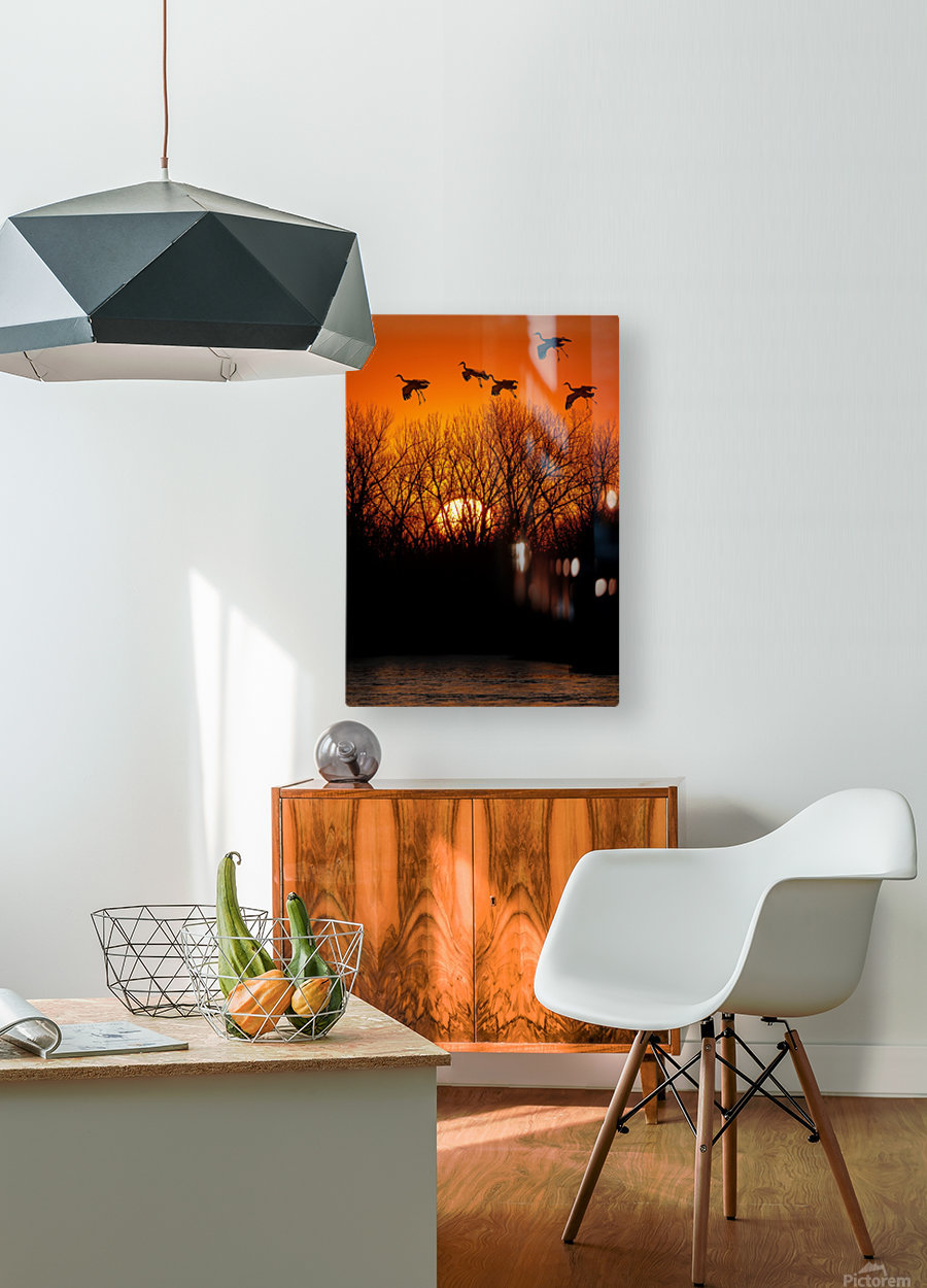 Dawn patrol over the Platte  HD Metal print with Floating Frame on Back