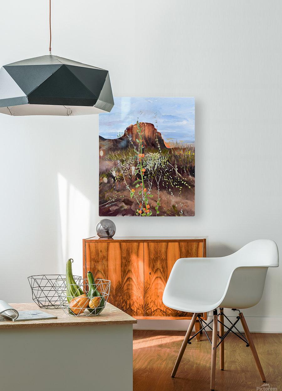 Arizona Desert Flowers  HD Metal print with Floating Frame on Back