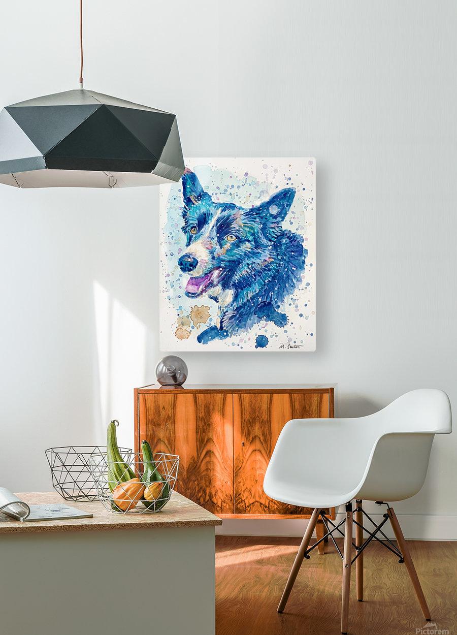 Border Collie Dog - Portrait of Habbey  HD Metal print with Floating Frame on Back