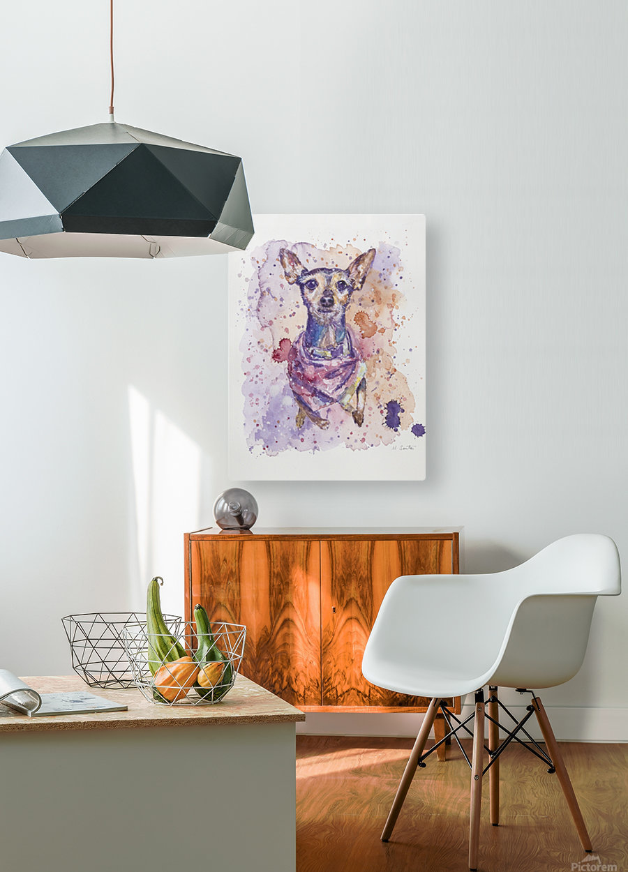 Chihuahua - Portrait of Gigi  HD Metal print with Floating Frame on Back
