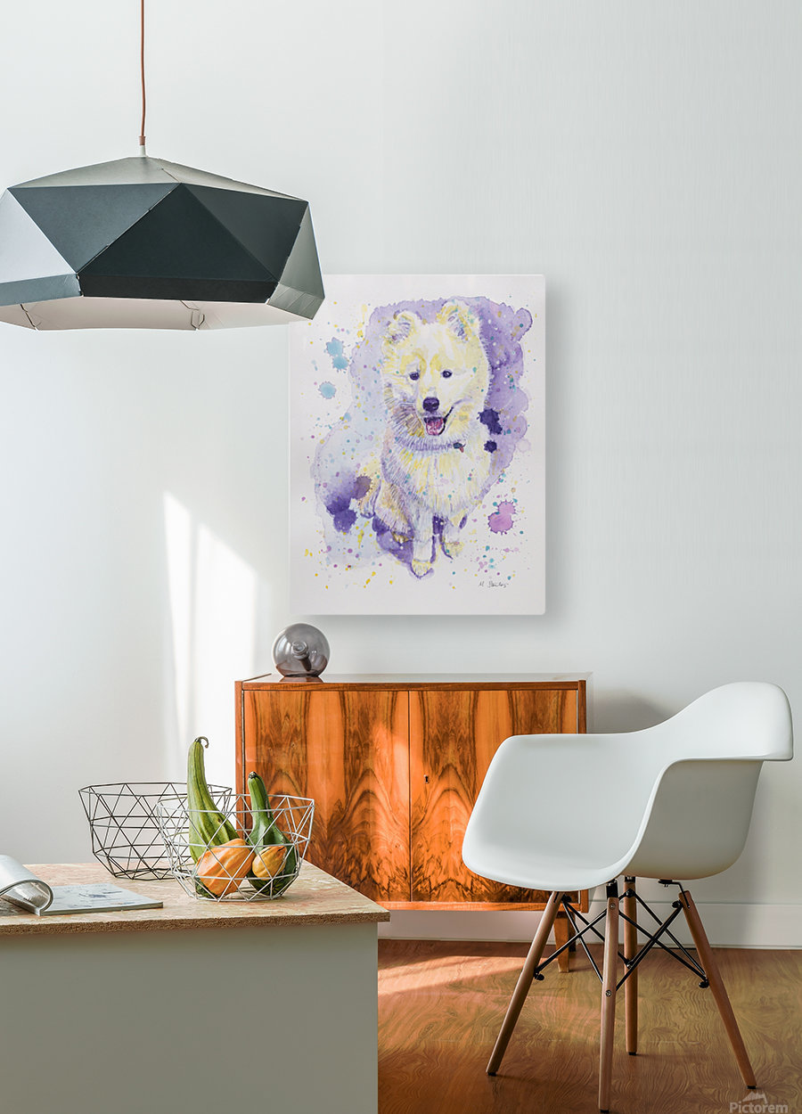 Samoyed Dog - Portrait of Juno  HD Metal print with Floating Frame on Back