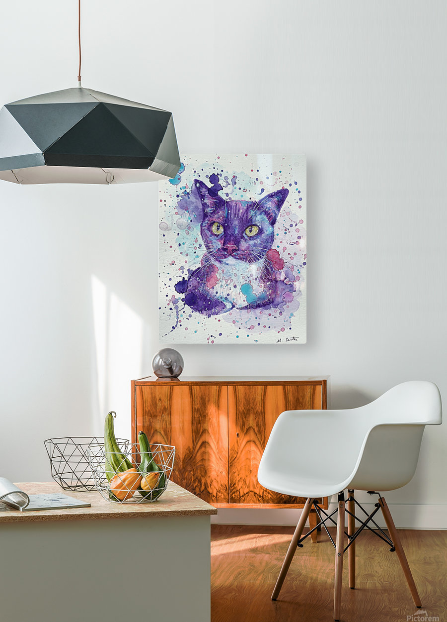 Tuxedo Cat - Portrait of Flash  HD Metal print with Floating Frame on Back