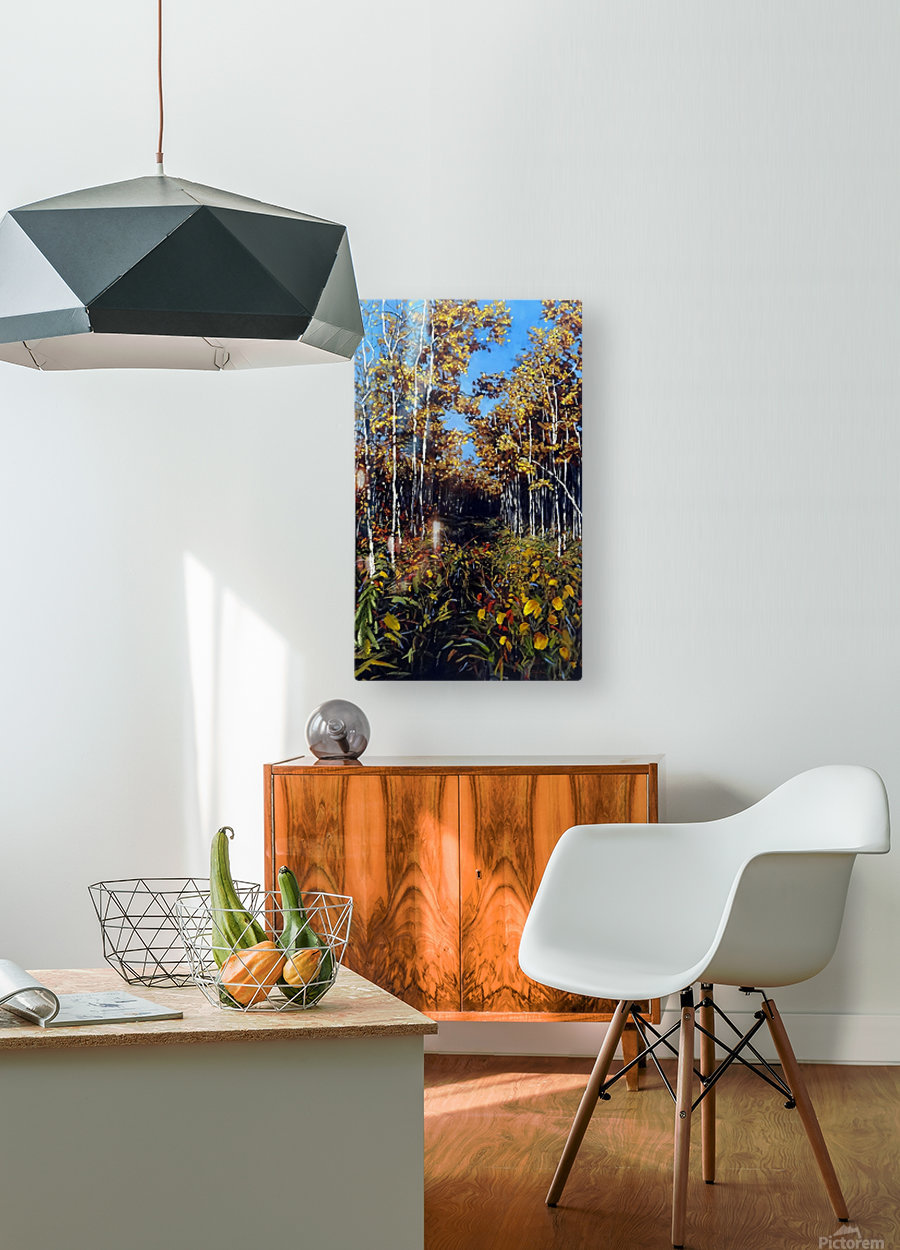 Fall Trail Fishcreek Park  HD Metal print with Floating Frame on Back