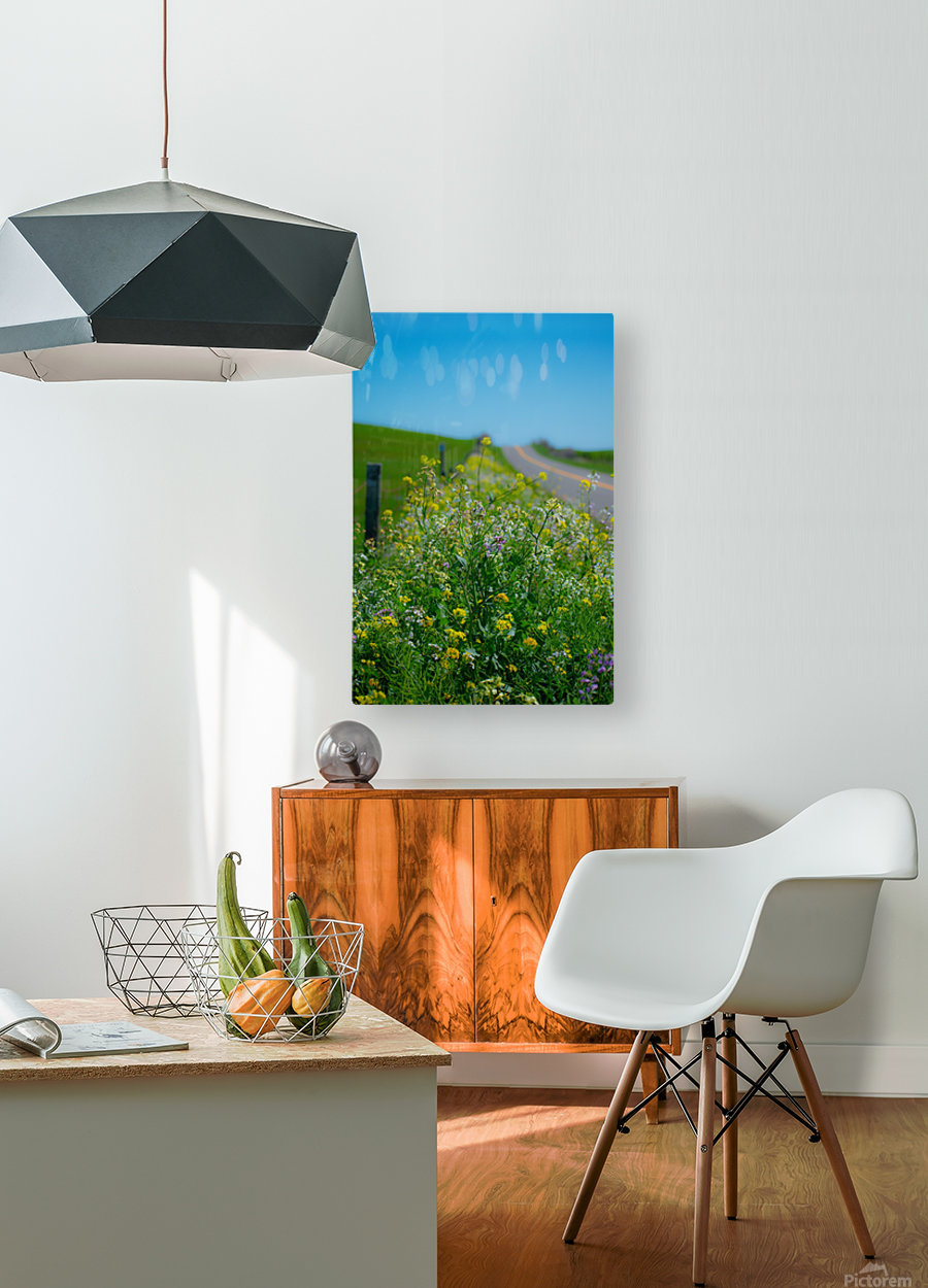 20190330 DSC_0592  HD Metal print with Floating Frame on Back
