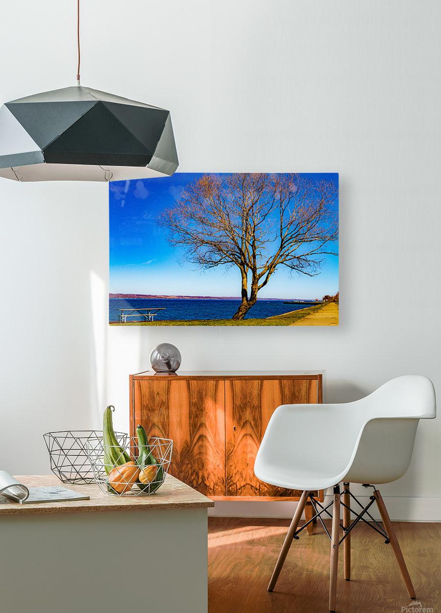 Seneca Springtime  HD Metal print with Floating Frame on Back