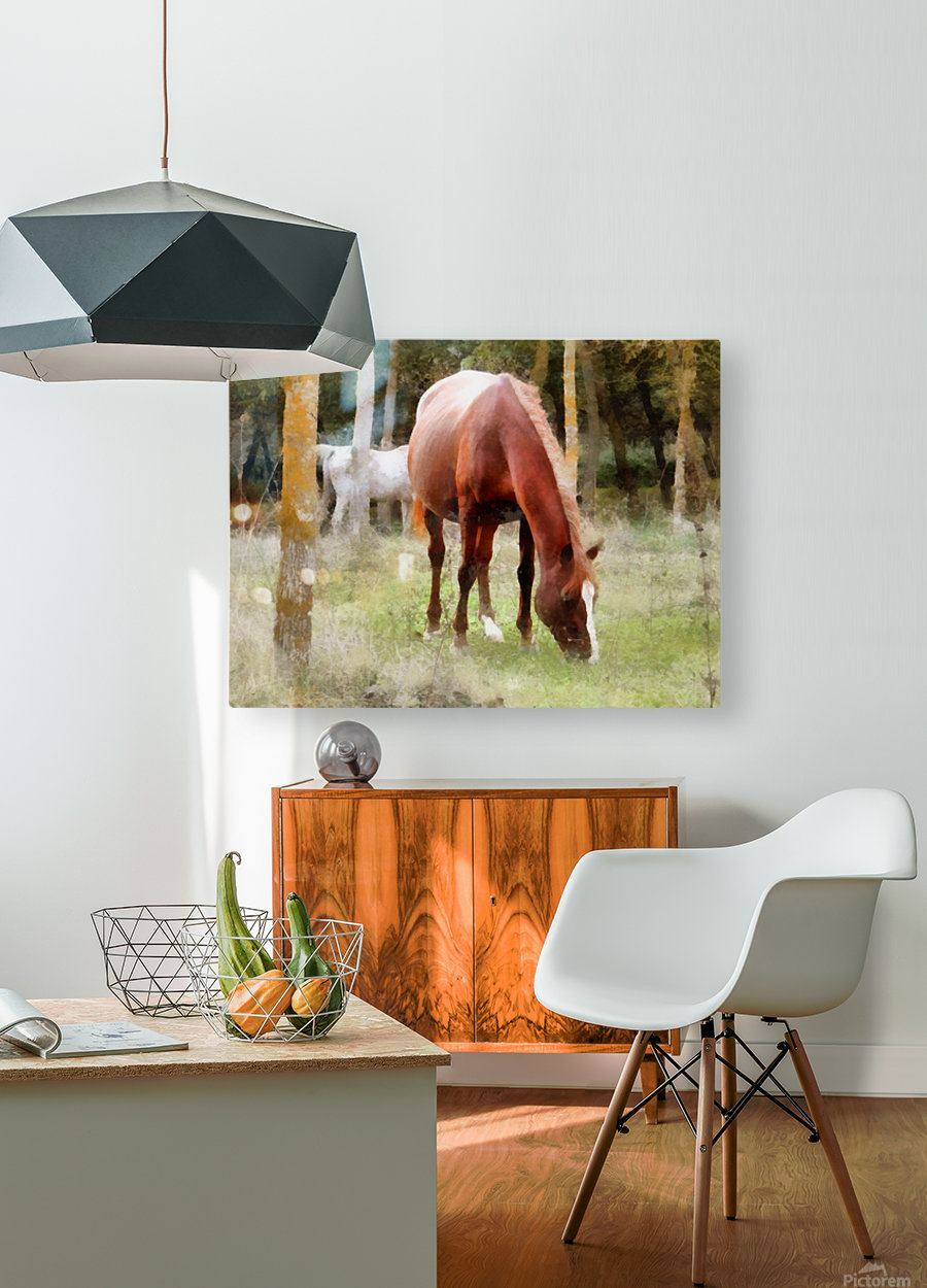 Pregnant Tan Mare Grazing  HD Metal print with Floating Frame on Back