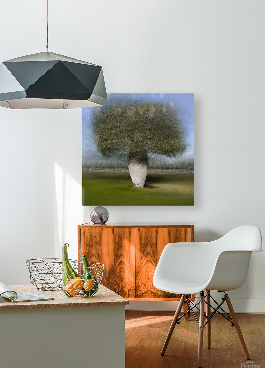 Ceiba speciosa  HD Metal print with Floating Frame on Back
