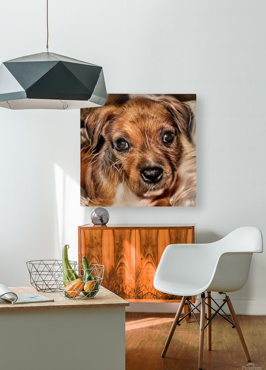 Dog Art  HD Metal print with Floating Frame on Back