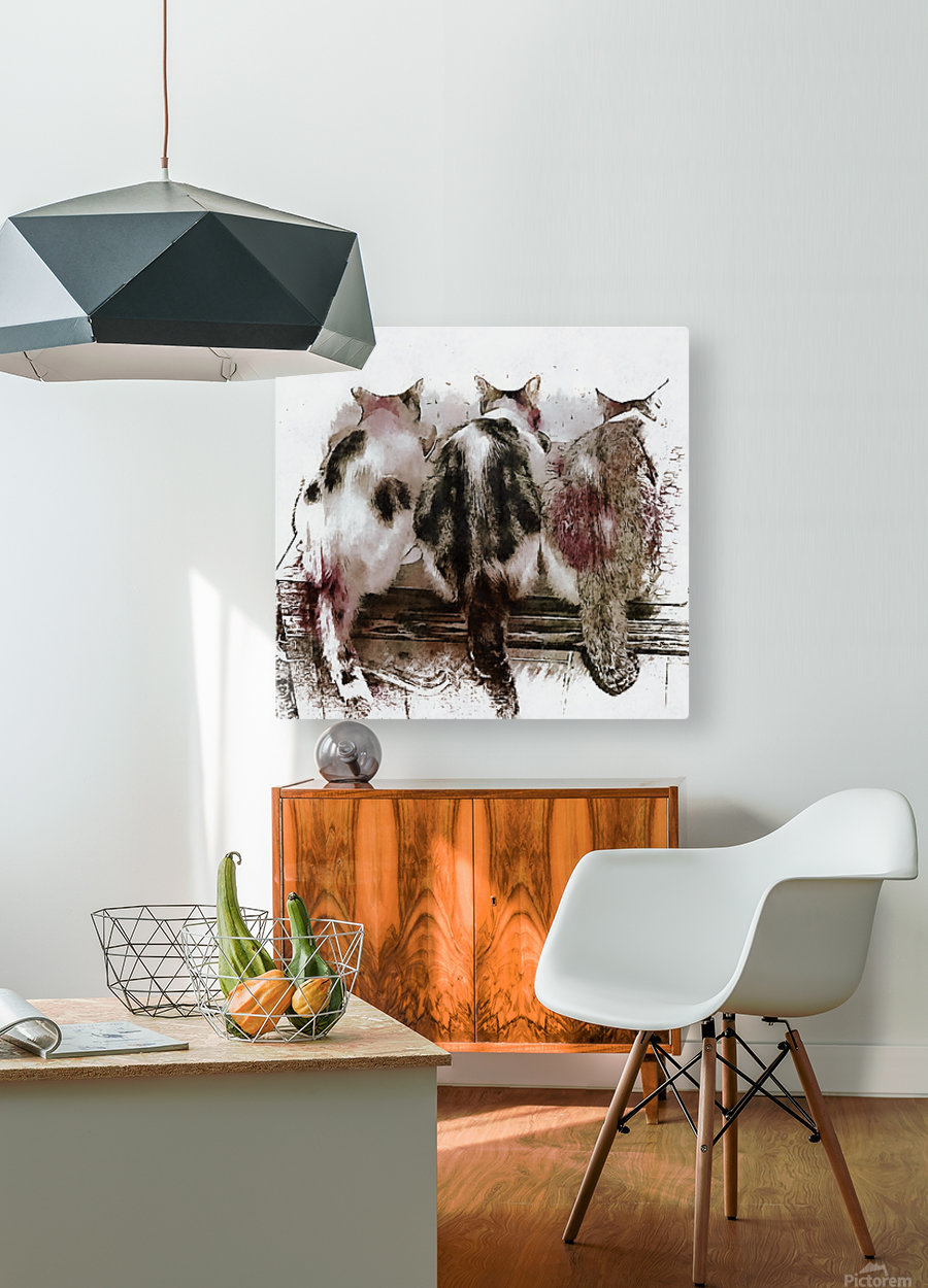 Feline Chow Time  HD Metal print with Floating Frame on Back